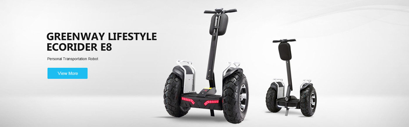 Saldo Electric Scooter